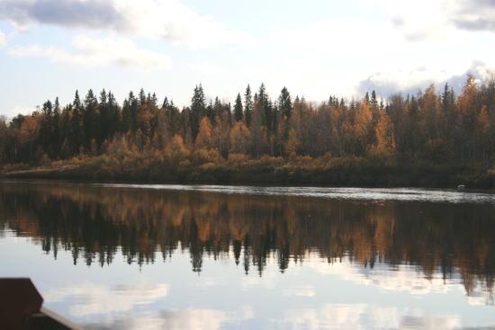20,10,4 岸の鏡像17b.jpg