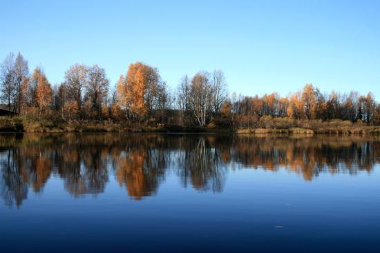 20,10,4 川岸の鏡像6b.jpg