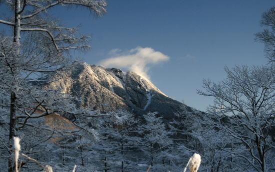 20,11,26 太郎山と雪華1b.jpg