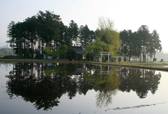 20,4,30 塩野室の鎮守の森の鏡像2b.jpg