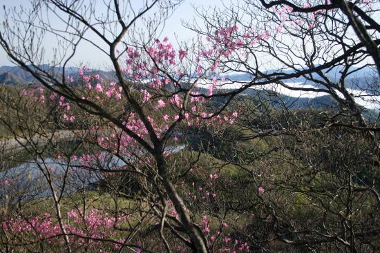 20,5,4 栗山ダムと雲海とヤシオ1b.jpg