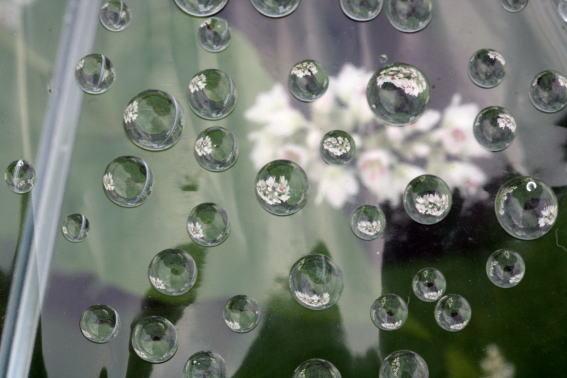 21,9,17ソバの花とヒガンバナ2-9b.jpg