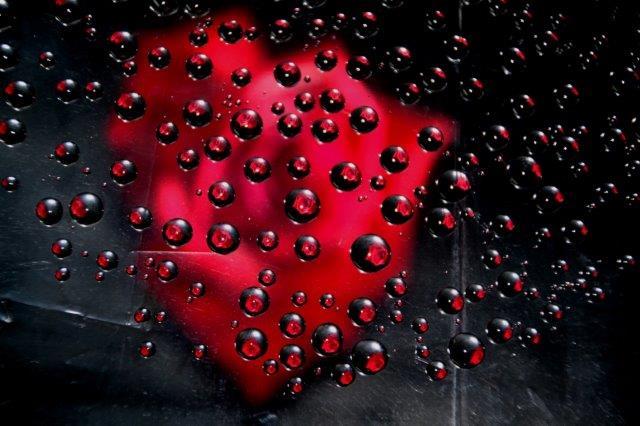 25,7,10 滴のバラ1-5.jpg