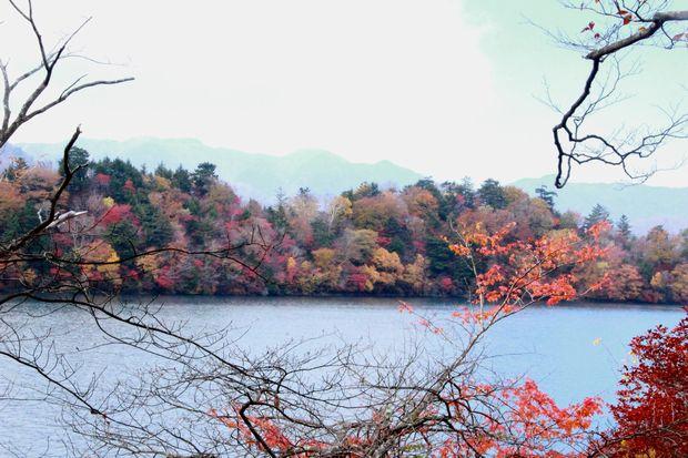 28,10 30 中禅寺湖南岸の紅葉1-9b.jpg