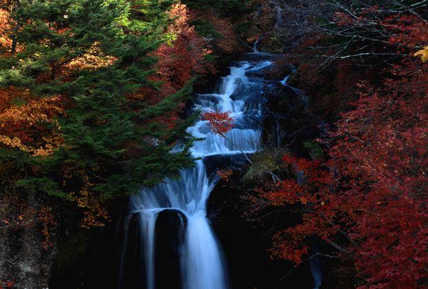 28,10,23竜頭の滝の紅葉3-3b.jpg
