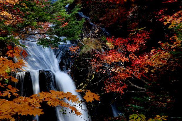 28,10,23竜頭の滝の紅葉4-4b.jpg