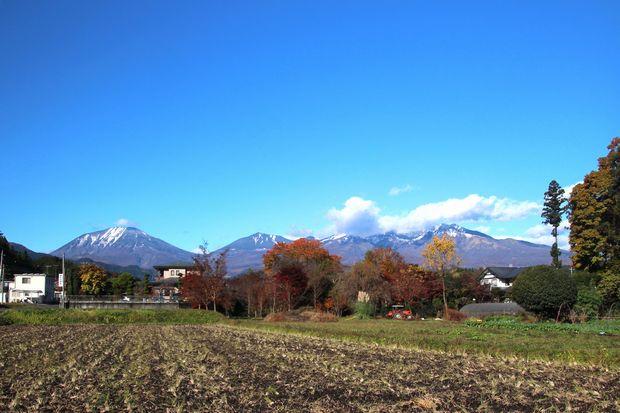28,11,12 冠雪連山と巷の紅葉5-1b.jpg