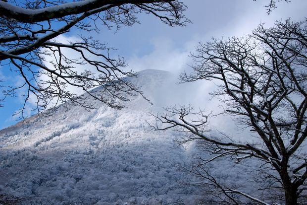 28,3,12 男体山の霧氷1-6b.jpg