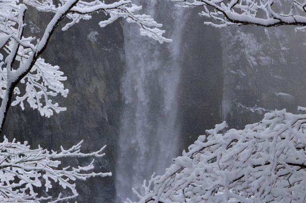 28,3,12 霧氷の華厳1-1b.jpg