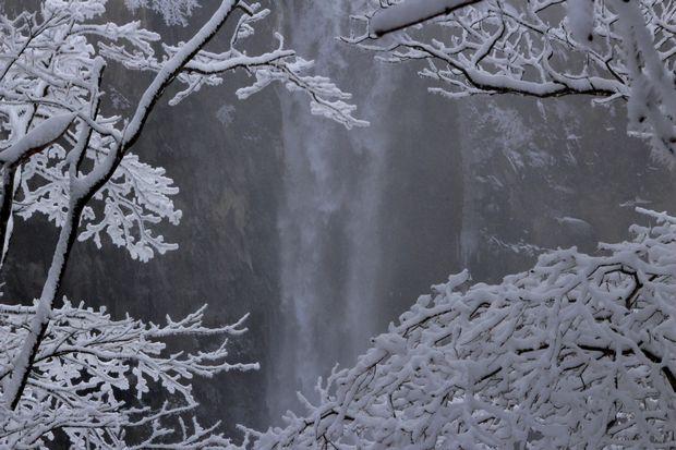 28,3,12 霧氷の華厳1-2b.jpg