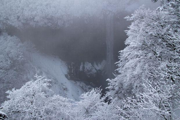 28,3,12 霧氷の華厳2-3b.jpg