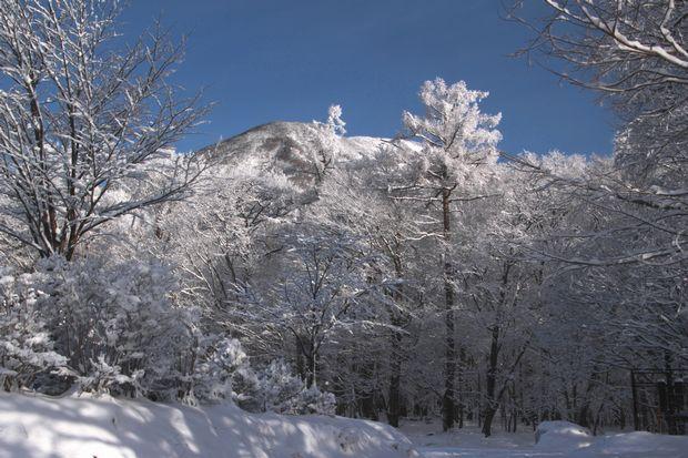 28,3,13男体山の霧氷2-3b.jpg