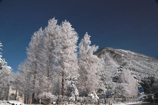 28,3,13男体山の霧氷3-3b.jpg