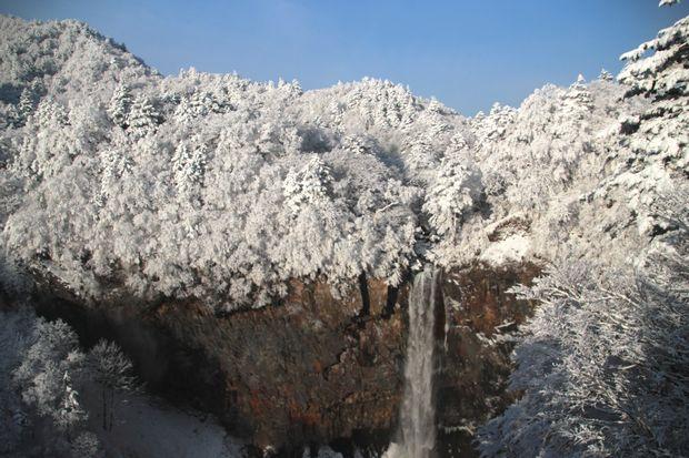 28,3,13霧氷の華厳1-3b.jpg