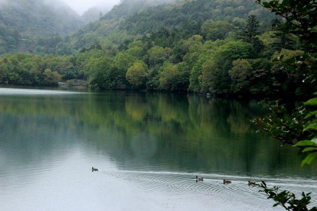 28,9,22 雨の湯の湖4-6b.jpg