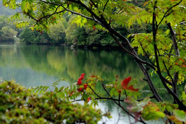 28,9,22 雨の湯の湖5-2b.jpg