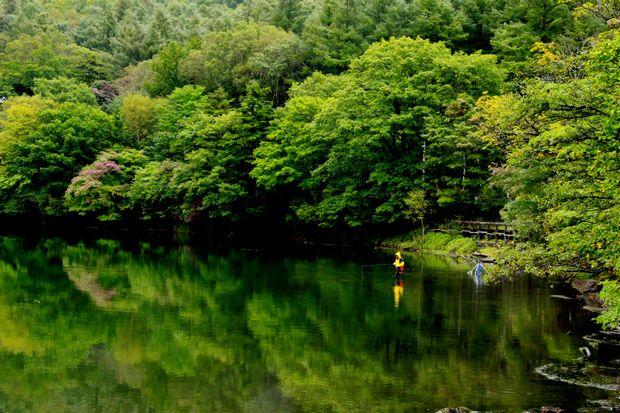 28,9,22 雨の湯の湖5-4b.jpg