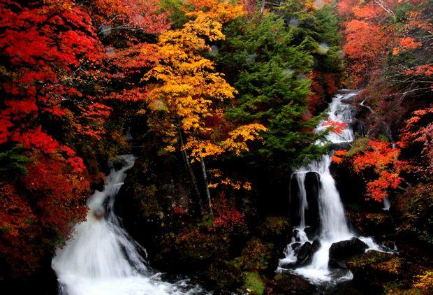 29,10,14竜頭の滝の紅葉3-3b.jpg