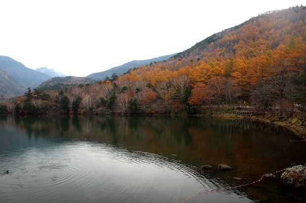 29,10,28 湯の湖晩秋3-6b.jpg