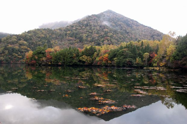 29,10,7 湯の湖の紅葉1-2b.jpg