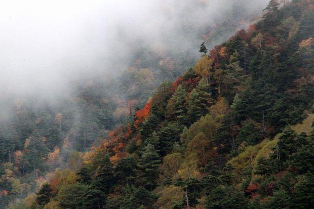 29,10,7 雲と紅葉3-2b.jpg