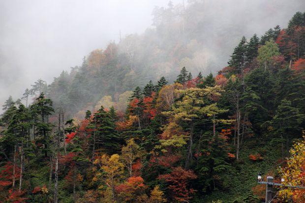29,10,7 雲と紅葉3-8b.jpg