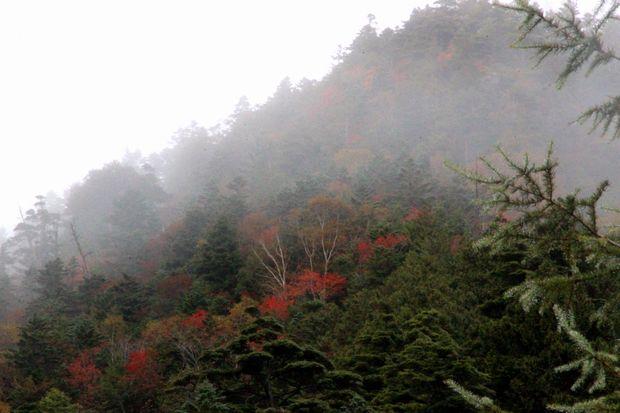 29,10,7 雲と紅葉4-3b.jpg