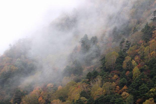 29,10,7 雲と紅葉5-3b.jpg
