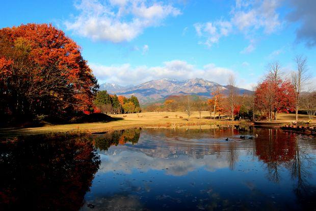 29,11,19 冠雪連山と大谷川公園の紅葉1-2b.jpg