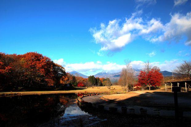 29,11,19 冠雪連山と大谷川公園の紅葉1-7b.jpg