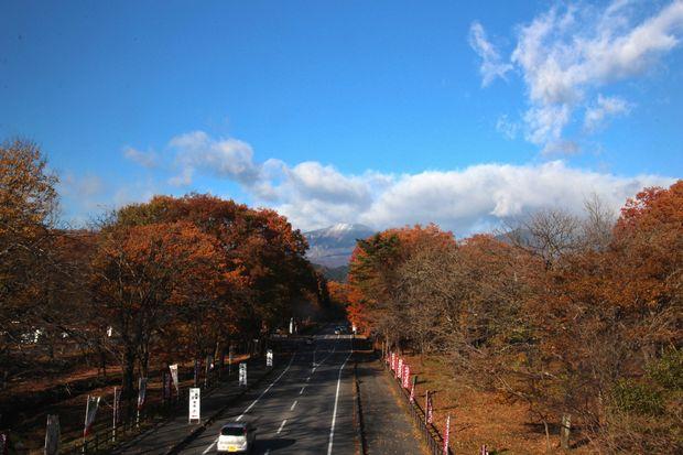 29,11,19 冠雪連山と大谷川公園の紅葉2-7b.jpg