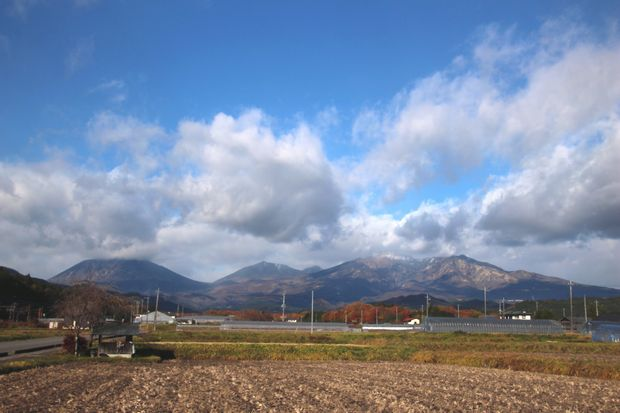 29,11,19 冠雪連山と大谷川公園の紅葉3-1b.jpg