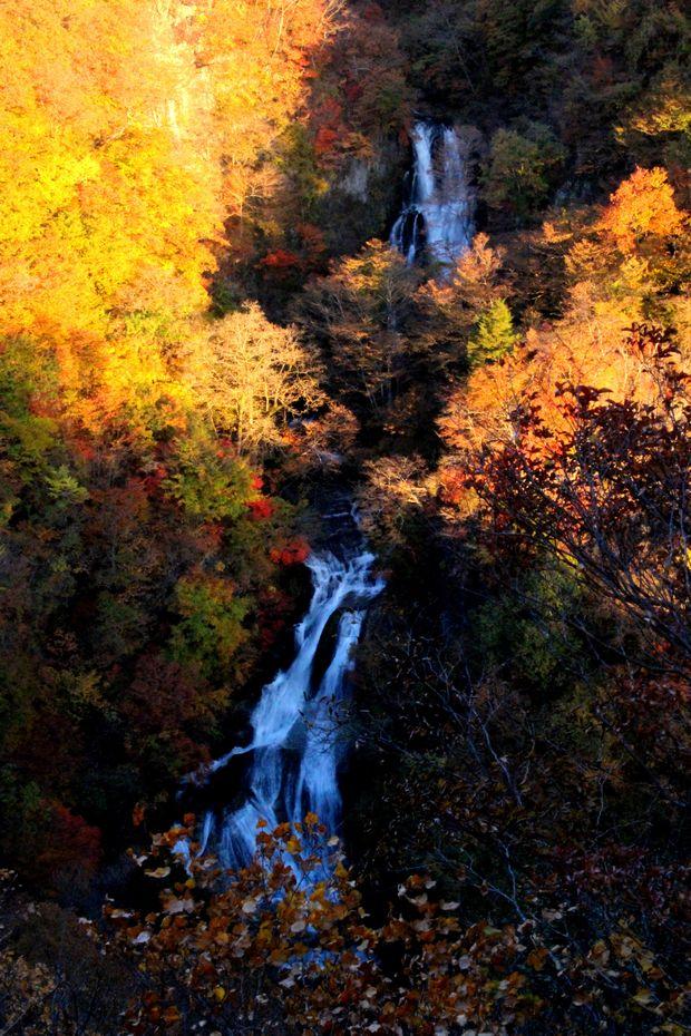 29,11,3霧降の滝の紅葉1-4b.jpg
