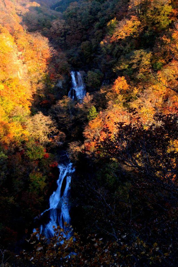 29,11,3霧降の滝の紅葉1-9b.jpg
