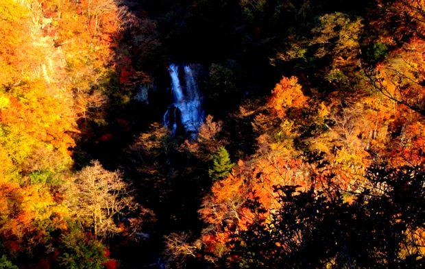 29,11,3霧降の滝の紅葉2-1b.jpg