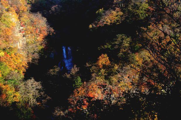 29,11,3霧降の滝の紅葉3-2'b.jpg