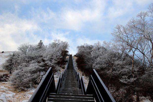 29,12,03天空の回廊の霧氷3-2b.jpg
