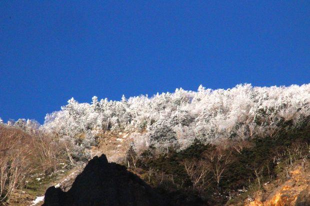 29,12,2 金精峠の霧氷2-8b.jpg