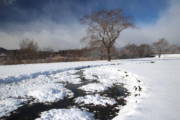 29,1,15 雪の大谷川3-1b.jpg