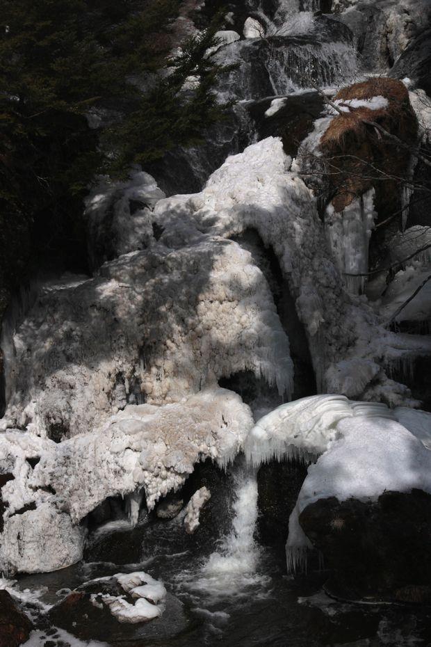 29,3,12竜頭の滝1-4b.jpg