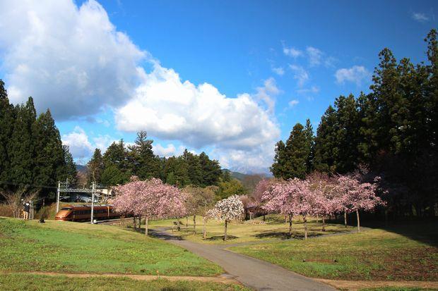 29,4,23 連山と桜2-1スペーシアb.jpg