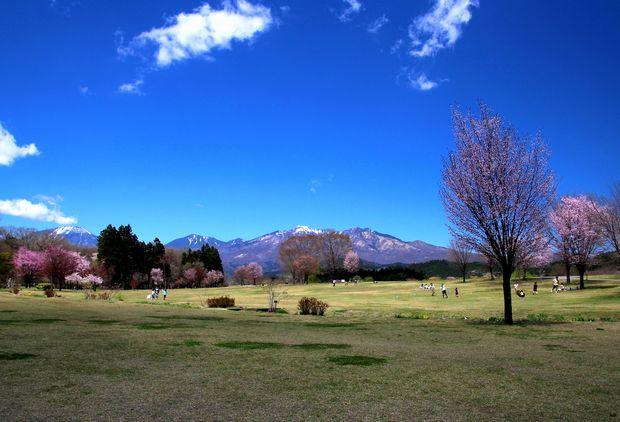 29,4,23 連山と桜2-4b.jpg