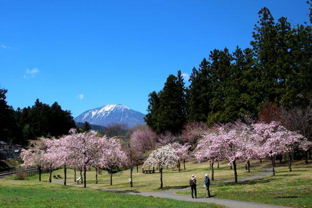 29,4,23 連山と桜2-9b.jpg