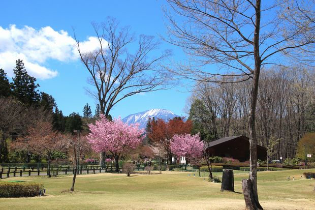 29,4,23 連山と桜3-7b.jpg