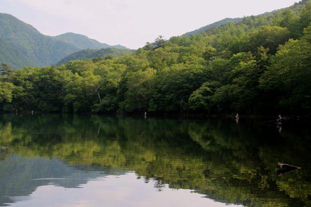 29,7,22 湯の湖の鏡像 1-2b.jpg