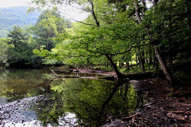 29,8,5 湯の湖の鏡像2-9b.jpg