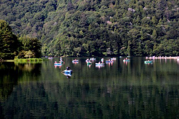 29,8,5 湯の湖の鏡像と鯉2-4b.jpg
