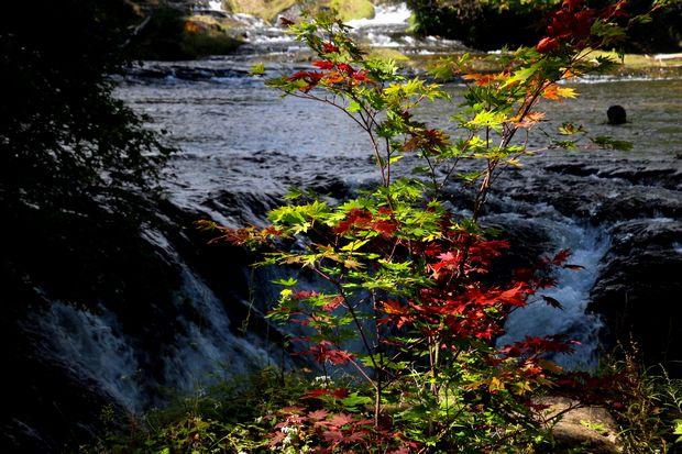 29,9,24竜頭の滝と紅葉4-5b.jpg