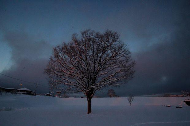 30,1,23大雪の朝雪華の朝焼け1-2b.jpg