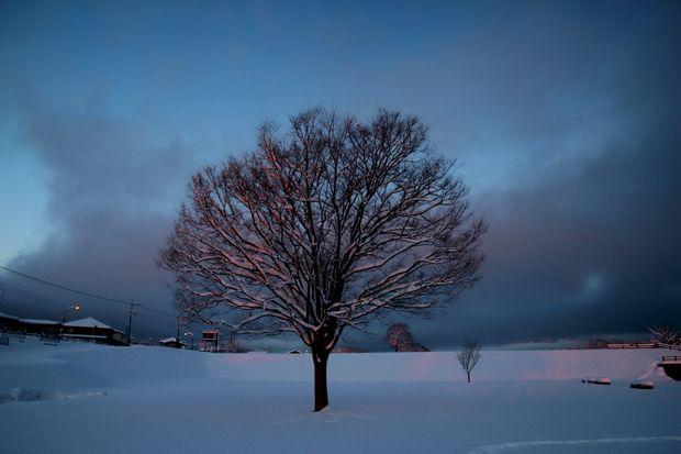 30,1,23大雪の朝雪華の朝焼け1-3b.jpg